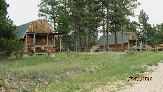 Double D B&B Cabins: View of the 2 cabins