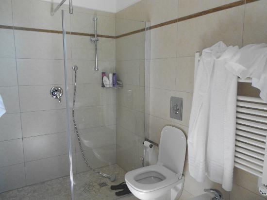 Hotel Oceanomare: il bagno.... grande doccia