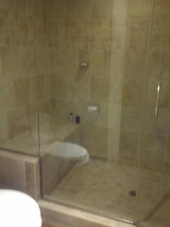 Huge shower with bench in the bathroom. - Picture of Craddock ...