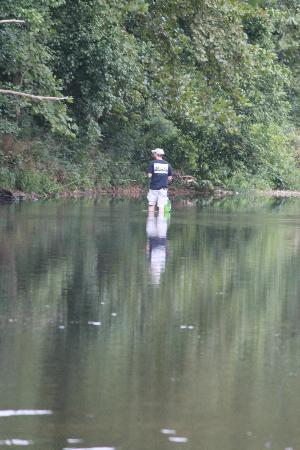 The river picture of roaring river state park cassville for Roaring river fishing