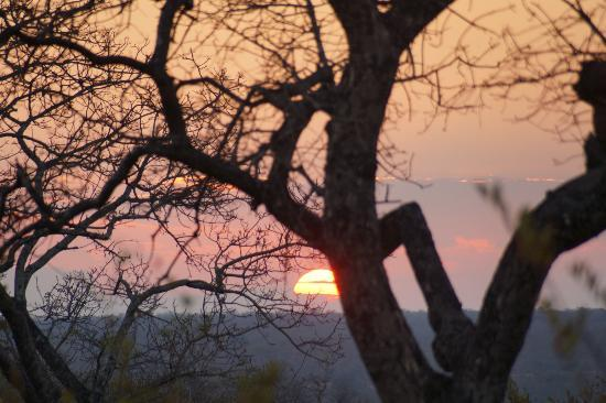 Simbambili Game Lodge: african sunset 