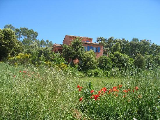 Lou Soleou : maison provençale