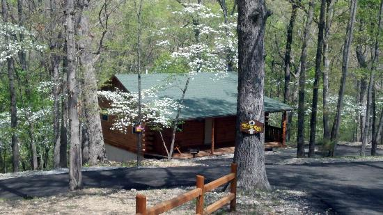 Lake Forest Luxury Log Cabins: Secluded Wooded Setting!