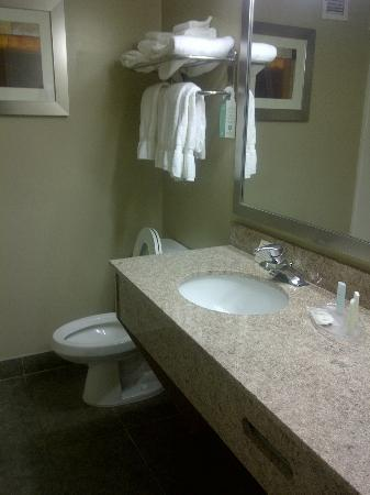 Comfort Suites Inn at Ridgewood Farm: Bathroom view