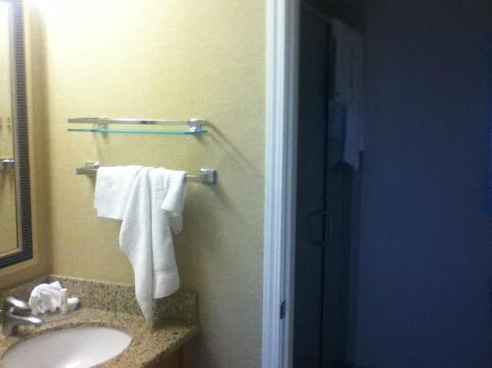 Residence Inn by Marriott Calgary Airport: Bathroom, sink outside door and shower/toilet inside