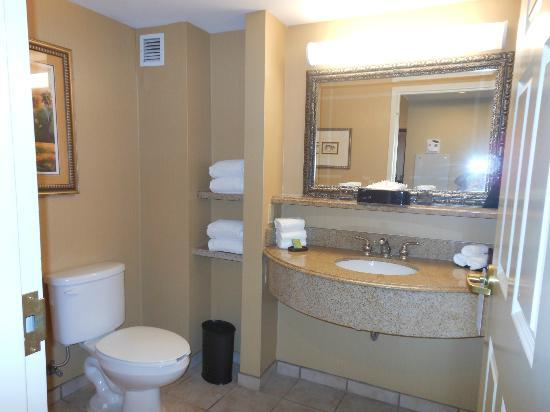 Embassy Suites by Hilton Orlando Downtown: Bathroom