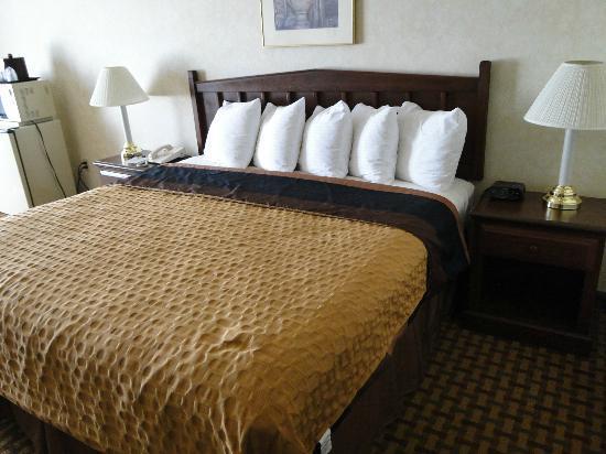 Best Western Plus Rama Inn & Suites: Comfy King Bed
