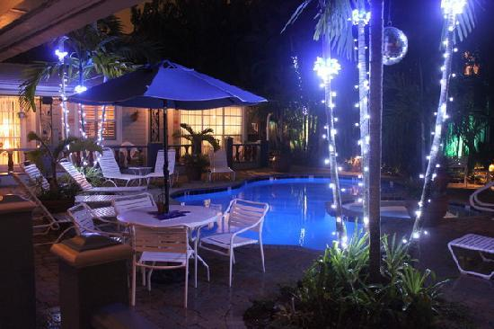 Coral Reef Guesthouse: Night Time on the property