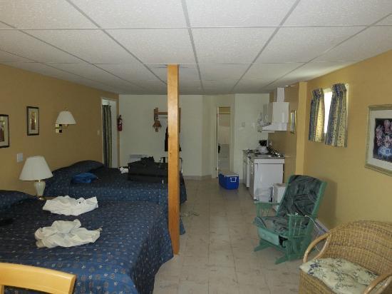 Hotel Motel Fleur de Lys: Vue de la chambre