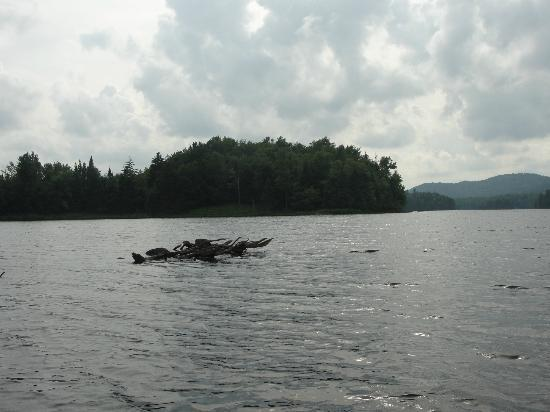 St. Regis Canoe Outfitters: Lows Lake