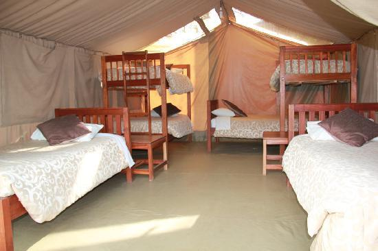 Wildebeest Eco C& & Wildebeest Eco Camp - UPDATED 2018 Prices u0026 Guest house Reviews ...