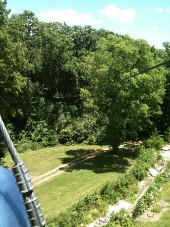 Sky Tours at YMCA Union Park Camp: View from the one platform