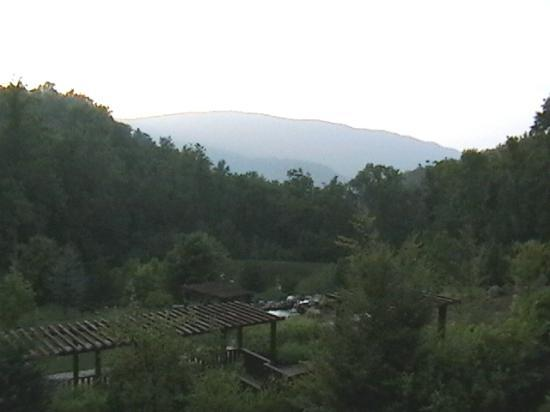 House Mountain Inn: View of grounds from top floor balcony.
