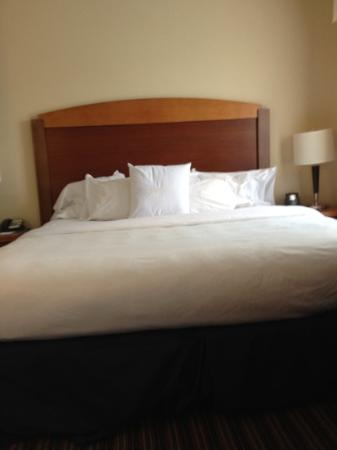 Homewood Suites by Hilton Virginia Beach/Norfolk Airport: Very comfortable bed.