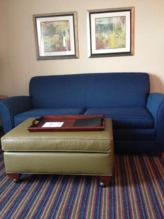 Homewood Suites by Hilton Virginia Beach/Norfolk Airport: Great living area.