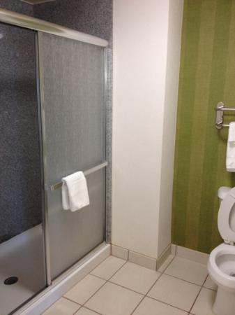 Homewood Suites by Hilton Virginia Beach/Norfolk Airport: The bathroom is huge.