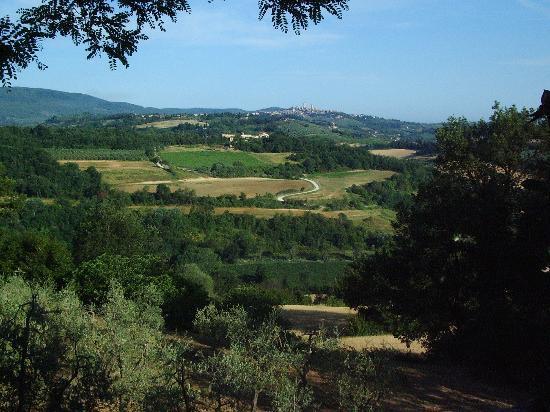 Agriturismo Santulivieri: Vista su San Gimignano da Colle Val d'Elsa