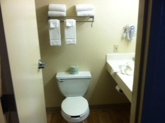 Extended Stay America - Minneapolis - Airport - Eagan - South: bathroom