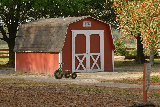 Bradenton, FL: Toy Barn
