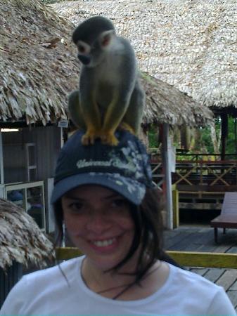 Hotel Pirarucú: Turista posando con micos en la Isla de los Micos