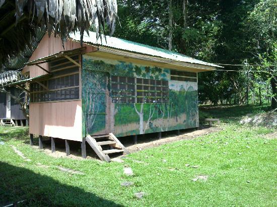 Hotel Pirarucú: Comunidades Indigenas