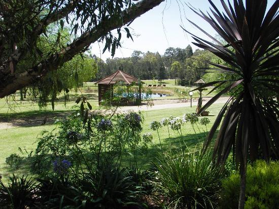 Splinters Guest House: Garden