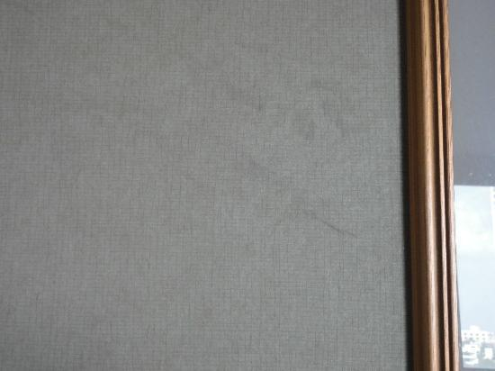 Doubletree Hotel Tulsa-Downtown: Scuff marks 5 feet up the wall.