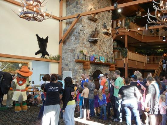 جريت وولف لودج ترافيرس سيتي: lobby with critter pictures 