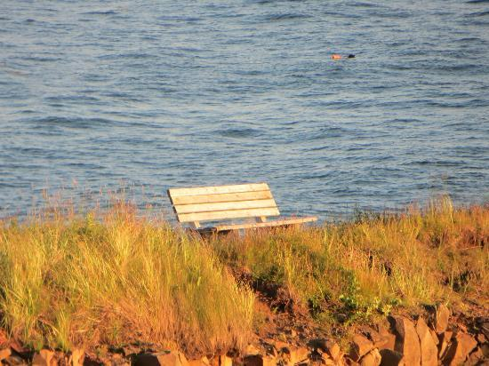 The Lighthouse on Cape d'Or: A bench
