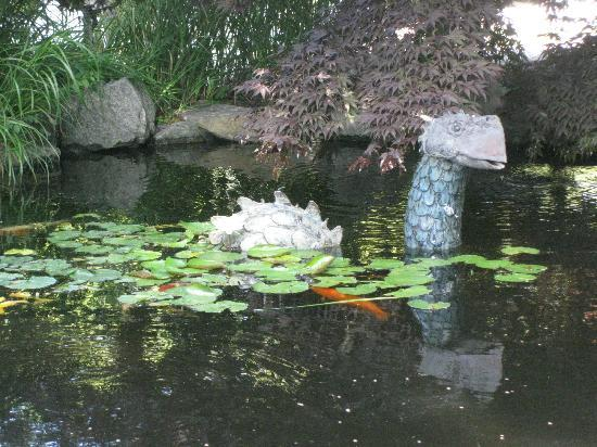 Pleasant Bay Village: The wonderful koi pond