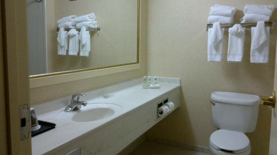 Country Inn & Suites By Carlson, Newark Airport: bathroom