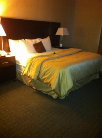 Quality Suites: king suite bedroom