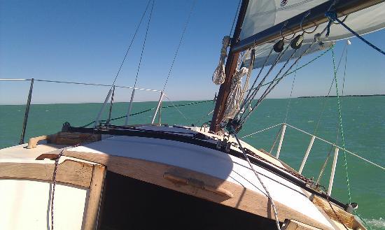 Florida Keys Sailing: Salina loves the wind