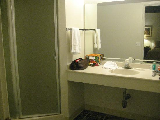Royal Copenhagen Inn: Large bathroom