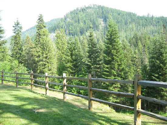 Lochsa Lodge: backyard lodge view