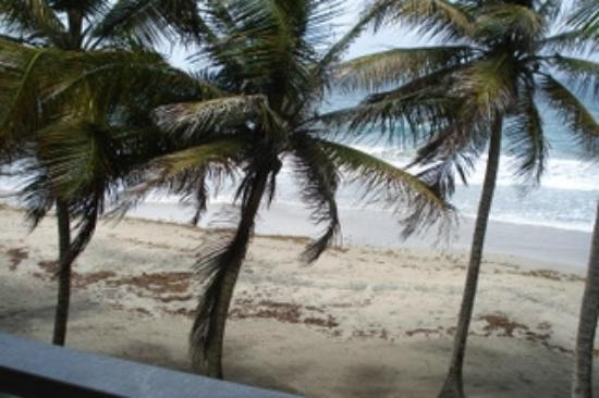 Petite Anse Beachfront Hotel & Restaurant Grenada: Great beach for walking