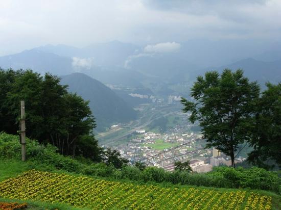 Yuzawa Highland Alpine Garden: View from the top
