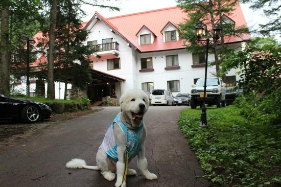 Takayama Wan Wan Paradise: ホテル
