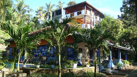 Photo of Black Beauty Guesthouse Unawatuna