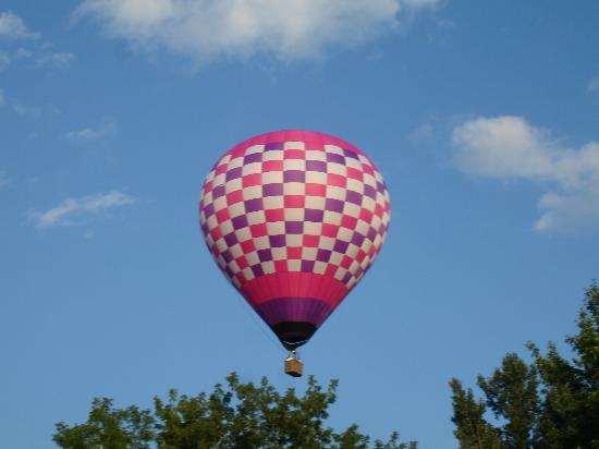 Damn Yankee Balloons : Raspberry Ripple 8 passenger balloon