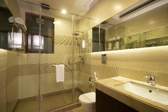 Hotel Vaishree Boutique: Bath Room
