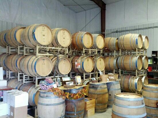 Ecluse Wines