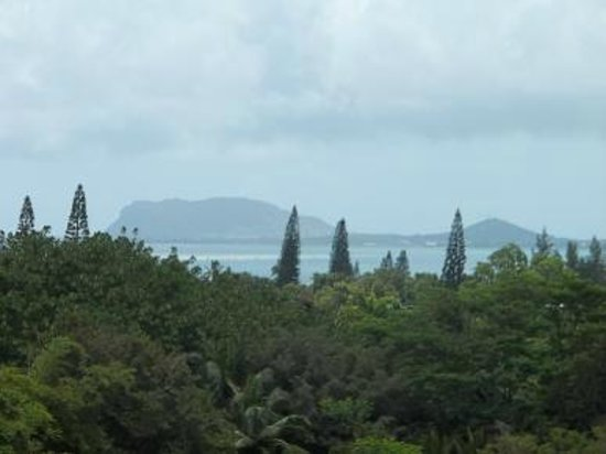 Senator Fong's Plantation and Gardens: Fruit orchards and Kaneohe Bay