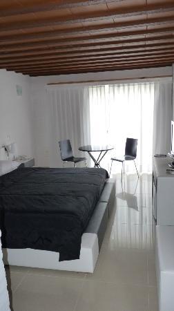 Chihuahua Resort: room