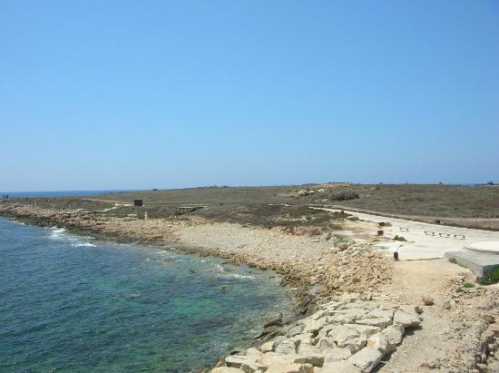 Dimma Seaside Houses: passeggiata costiera arrivo all'Harbour Kato Pafos