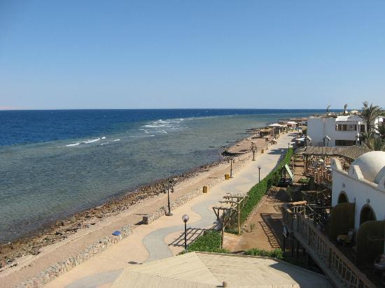 Star Of Dahab Hotel: View of seafront from roof