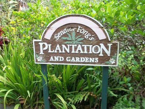 Senator Fong's Plantation and Gardens: The tour starts here.