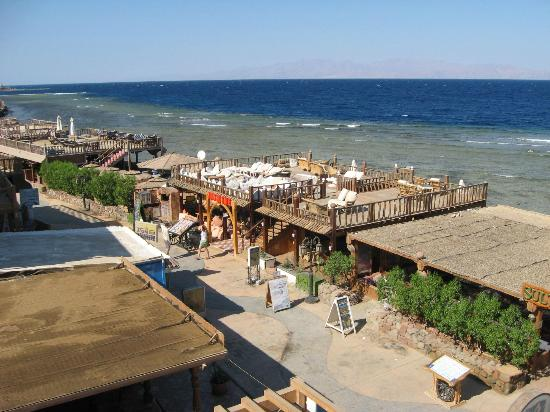 Star Of Dahab Hotel: VIew of the bars shore front from the roof