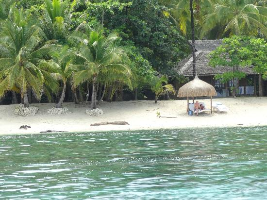 Coco Grove Beach Resort : taken from a kayak of the the bougainvilla and beach hut