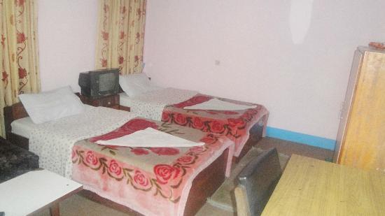 Om Tara Guest House: Standard attached bath - Twin 